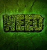 WeedVDK